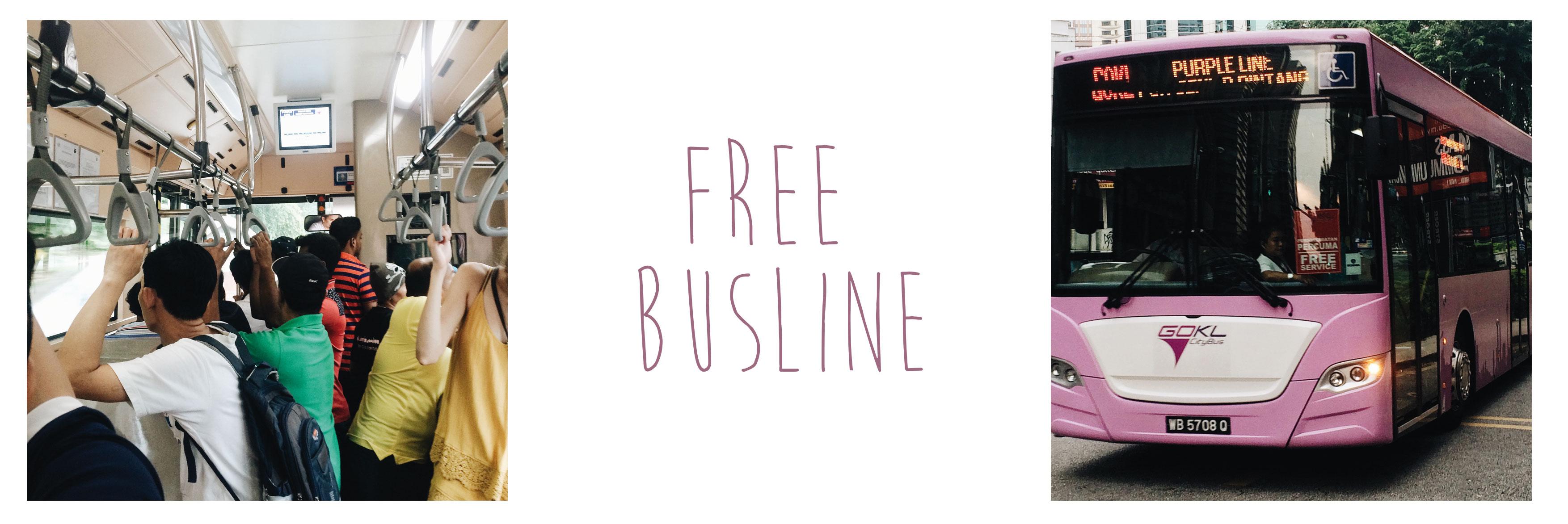 KL_Free-Busline_clara-wolff.de