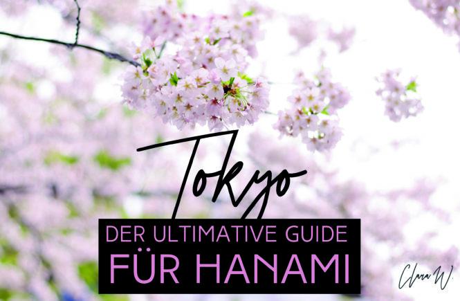 Tokio_Hanami